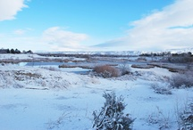 Idaho Sunsets and Snow / by Daysha Wilson
