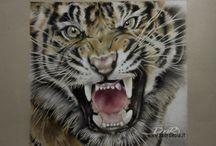 Draw Animal, disegni di animali