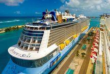 Lucirte cruises.