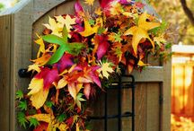 Fall Holiday {Craft~Food~Decor} Ideas! / by Tammy Rosen
