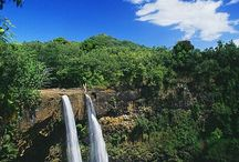 Hawaii / by Vicki Landry