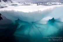 Iceberg Pictures