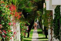 Bungalows #CordialBiarritz