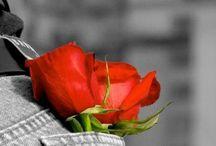 Color splash...red.
