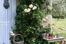 Garden designs / by melissa d