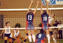 volleyball / volleyball