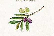 Olive tat