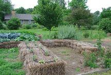 ogródki użytkowe