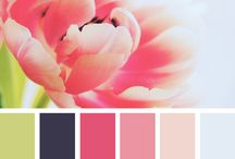 color palettes / The first step to create your blog identity is to define the visual elements. These amazing color palettes are very useful during a brainstorming about your brand.