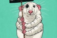 Ratts