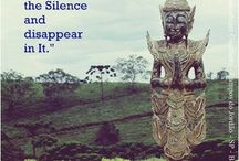 Silêncio/ Silence