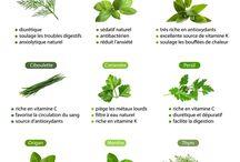 bienfaits herbes aromatiques
