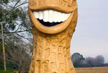 Georgia Roadside Attractions / World's largest things and other roadside attractions in Georgia to see on your next road trip.