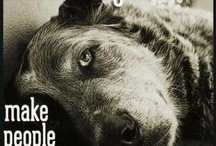 Rescue Animals / by Catherine Shelby