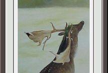 Animaux/Oiseaux / Animaux et Oiseaux