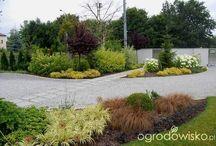 ogród zmyślony