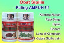 Obat Sipilis Raja Singa Gonore / Obat Sipilis Kencing Nanah Raja Singa