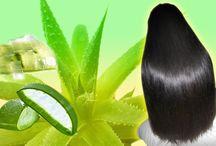 Aloe Vera hair loss treatment
