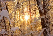 Winter / by Marie-Françoise Berriot