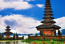 Bali / BALI er en eksotisk indonesisk ø med ca. 4 mill. indbyggere. Selv om øen kun er 140 km lang og 90 km bred, se http://www.atravel.dk/Bali/