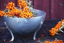 Eat in Colour - Orange / #orange #food
