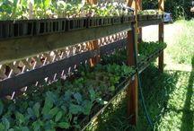 Garden SA