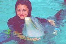 Ariana and Dolphins / Ariana love's Dolphins