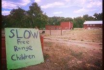 Colorado Staycations-Ollin Farms, Longmont, Colo. / Interesting places around/near Boulder County, Colo., or Colorado.