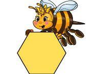 VČELY+HMYZ