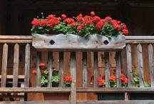 Balconi e poggioli