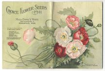 Seed Pack Samples / by Floret Flower Farm