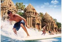 Tenerife : Surfing / People who Surf in Tenerife