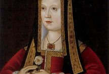 The Tudor history / by Christine Teirlynck