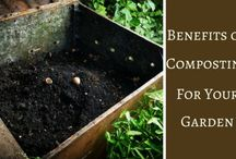Composting / Everything you need to know about composting. Vermicomposting, kitchen composting etc etc etc.