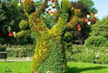 Virágszobrászat.. Zöldség, Gyümölcs Csodák.. / Művészi  szobrászat.  Érdekességek..