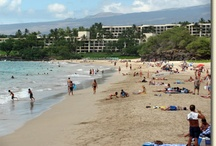 Fun in the Sun / You'll find organized activities such as snorkel dives and horseback rides available throughout North Hawaii. Prefer to go it alone? Hiking trails, beaches, and parks offer plenty of options for outdoor fun.