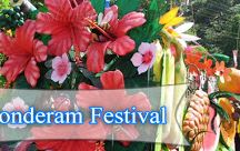 Bonderam Festival / Bonderam festival in Goa is an annual festival celebrated on the fourth saturday of August at Divar Island. know more information about this festival visit here: http://blog.goahotelgracianocottages.com/2013/08/bonderam-festival-in-goa.html