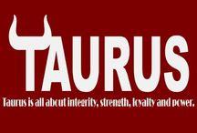 Taurus, beatch