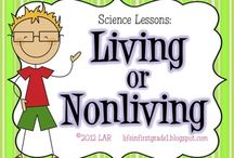 Living/nonliving / by Erika Griffith