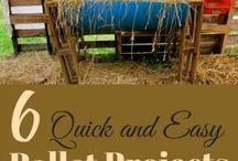 Gitane et chèvres