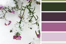 color! purple - brown - green