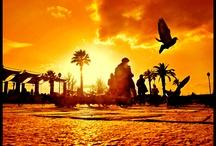 Articles on Turkey / by EWBC 2012