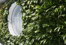 Vertical Cascade Gardens / The revolutionary system of vertical gardens called Cascade Gardens, patented by Němec company, allows anybody to bring a bit of nature to their home interior or exterior.