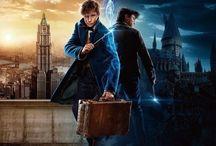 Harry Potter / Fantastic Beasts