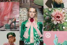 Cactus Fashion 2017