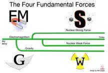 fundamental / blog post http://nicolegalpern.co/post/104580365986/fundamental