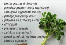 przyprawy ziola