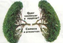 frases ecologia