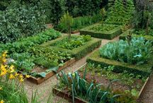 Jardines / Jardines de casas