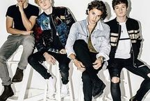 The vamps names